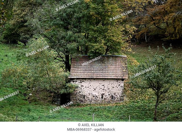 Small house on a pasture at the edge of the forest in autumn