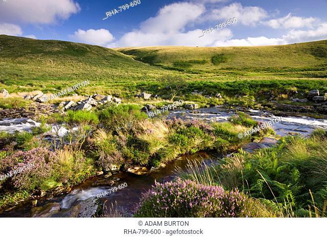 River Tavy running through Tavy Cleave in Dartmoor National Park, Devon, England, United Kingdom, Europe