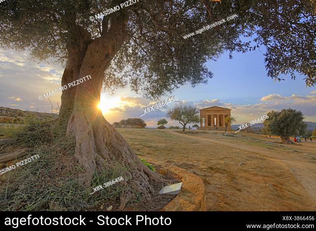 The Temple of Concordia at dusk, Valley of the Temples, Agrigento, Sicily, Italy