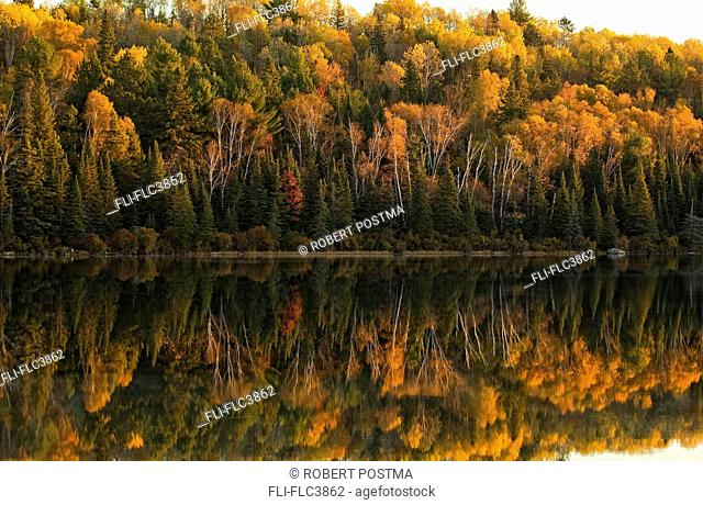 Fall colors reflected in the waters of Opeongo Lake, Algonquin Park, Ontario