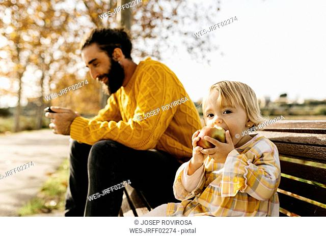 Father and daughter sitting on a bench in the park in autumn, father using smartphone, daughter eating an apple