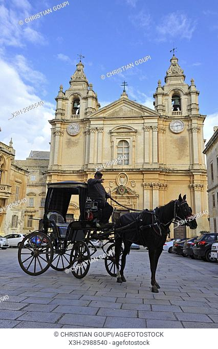 horse-drawn carriage in front of St. Paul's Cathedral, Mdina, Malta, Mediterranean Sea, Southern Europe