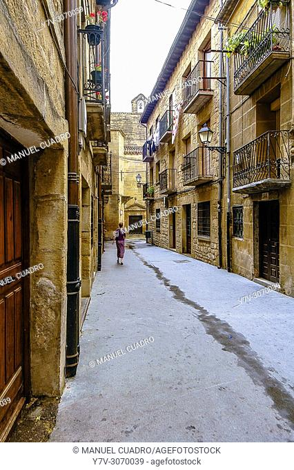 View of the town of Laguardia. Rioja Alavesa, Alava, Basque Country, Spain