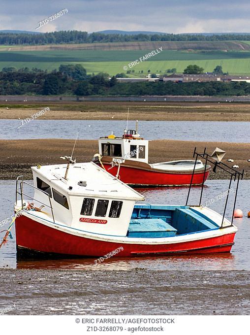 Montrose basin Angus Scotland UK