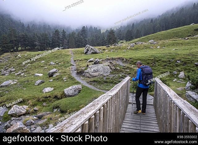 Aure valley, Hautes-Pyrenees department, France