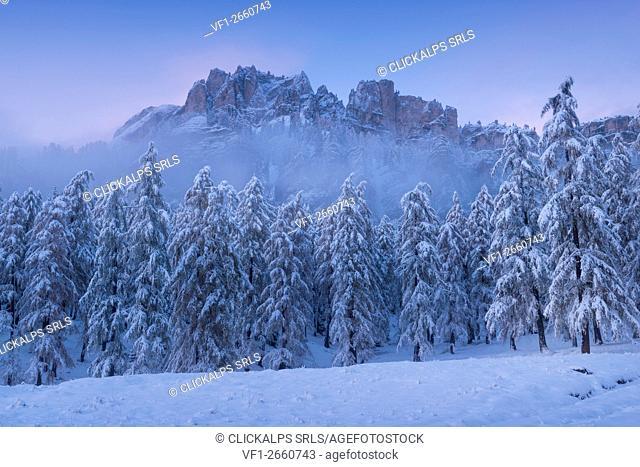 Crepe de Zumeles,Cortina,Ampezzo,Dolomites,Alps,Veneto,Italy