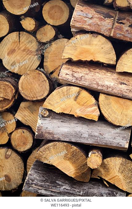 stacked firewood, logs of wood for heating