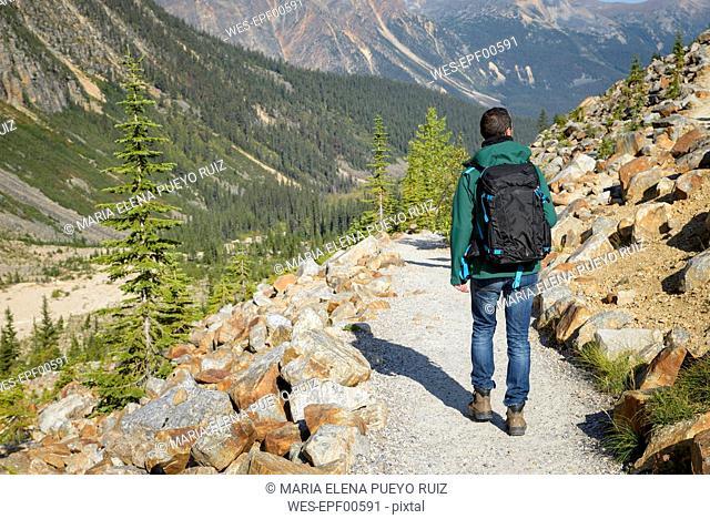 Canada, Jasper National Park, Hiker at Mount Edith Cavell