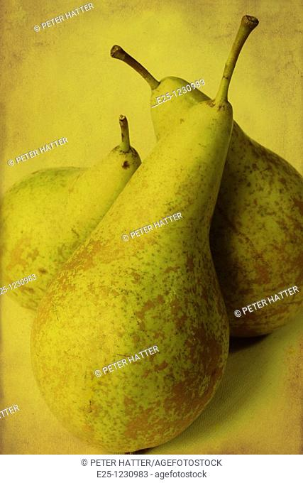 Three pears arranged in a still life composition with a textured finish