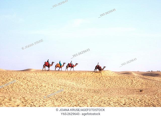 Nomadic people on camels in the Thar desert, Rajasthan, India
