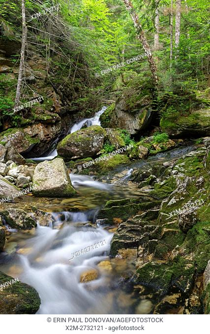 Cascade along Cold Brook in Randolph, New Hampshire during the summer months. This is believed to be the lower section of the forgotten Tertia Cascade