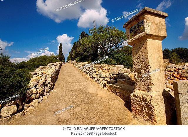 Felanitx. Mallorca. Baleares. España