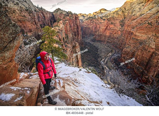 Young woman descending from Angels Landing, Angels Landing Trail, in winter, Zion Canyon, Mountain Landscape, Zion National Park, Utah, USA, North America