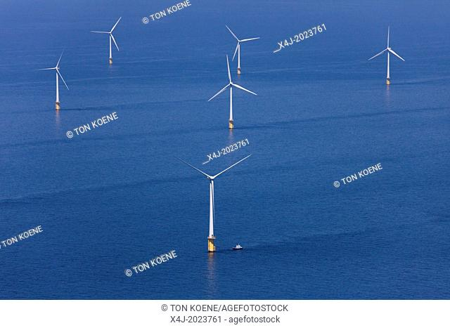 Dutch windmills in the North Sea