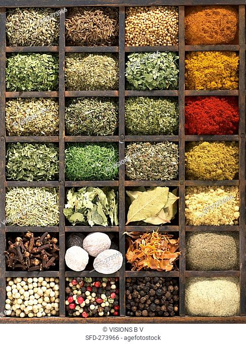 Various dried herbs and spices in type case overhead view