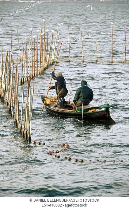 Fishermen at the Albufera National Park. Valencia province, Spain