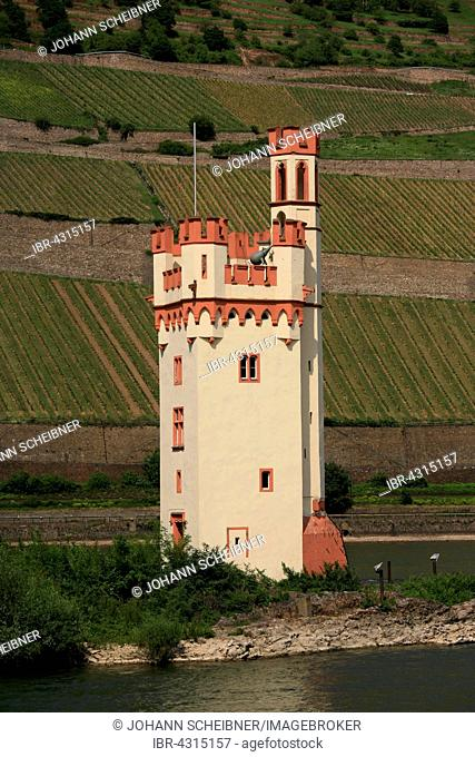 Mouse Tower, Mäuseturm, Bingen am Rhein, Rhineland-Palatinate, Germany
