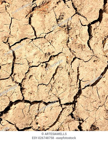 Dry cracks in mud closeup background