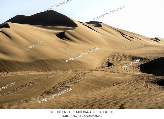 Regional conservation area of the Huacachina lagoon. Subtropical , Ica, Peru