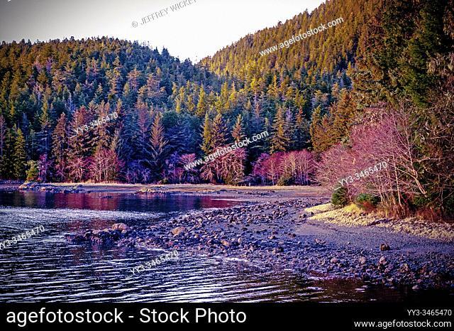 Rocky shore at Starrigavan Recreation Area near Sitka, Alaska, USA.