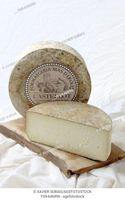 Cow milk cheese from Alt Urgell. Lleida province, Catalonia, Spain