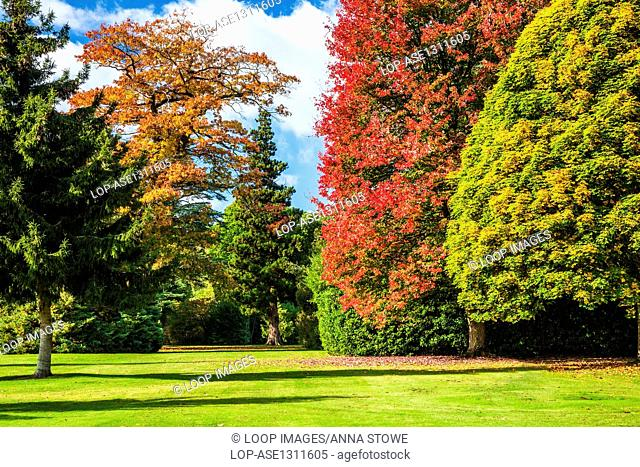 Autumn trees in the parkland of the Bowood Estate in Wiltshire