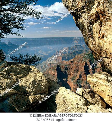 Colorado canyon. Arizona. USA