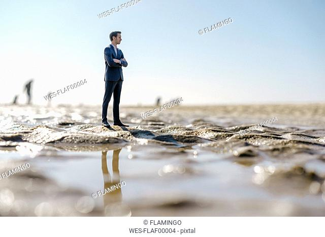 Businessman figurine standing on wet beach, looking at distance