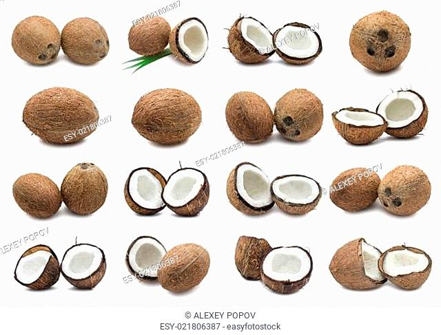 Coconuts collection