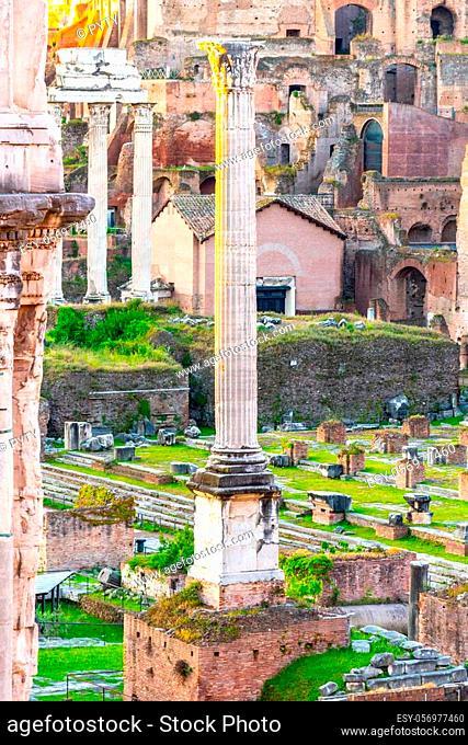 Column of Phocas in Roman Forum archeological site, Rome, Italy