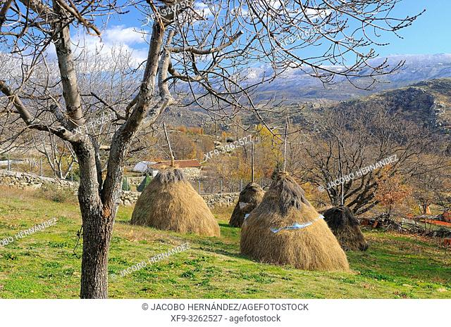 Haystacks. Navalosa. Gredos mountains. Avila province. Castilla y León. Spain