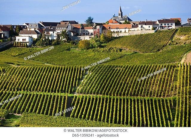 France, Marne, Champagne Region, Cramant, town and vineyards, autumn