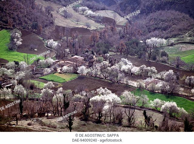 Agricultural landscape between Tirana and Elbasan, Albania