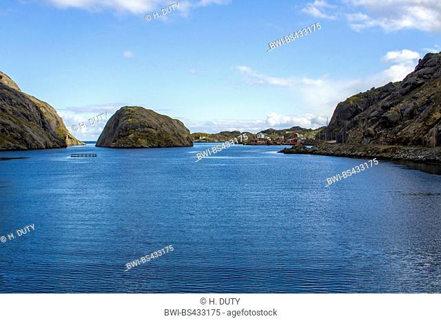 coastal scenery of the Lofotes, Norway, Lofoten Islands, Nusfjord