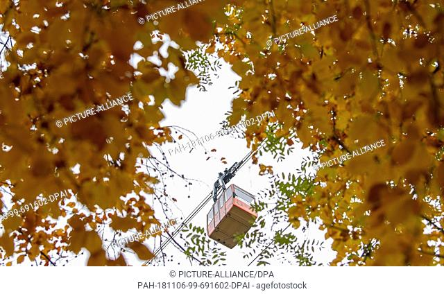 06 November 2018, Baden-Wuerttemberg, Oberried: A gondola of the Schauinslandbahn travels past leaves that have been colourfully discoloured in autumn