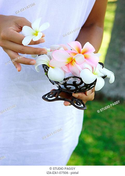 Mid section view of a woman holding Frangipani Plumeria flowers