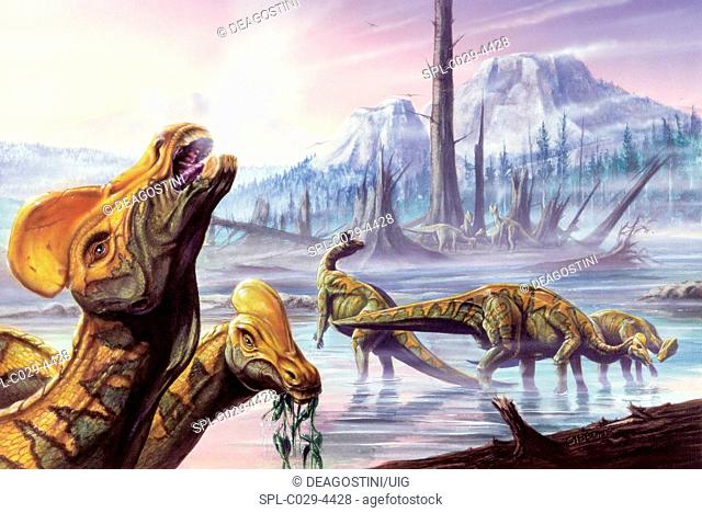 Illustration of three Corythosauruses in wetlands