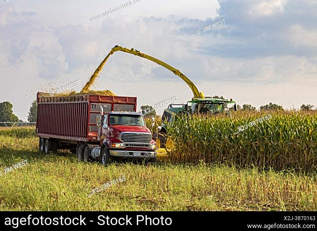 Hickory Corners, Michigan - Corn is harvested on a Michigan farm using John Deere forage harvesters. The corn is trucked to the nearby Prairie View Dairy for...