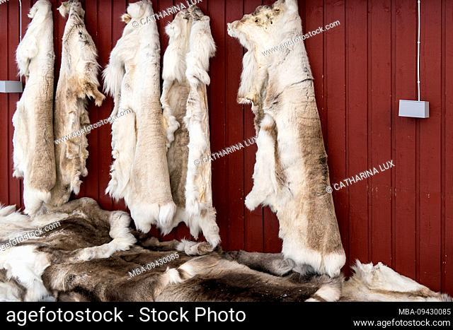 Sweden, Abisko, hut, reindeer skins