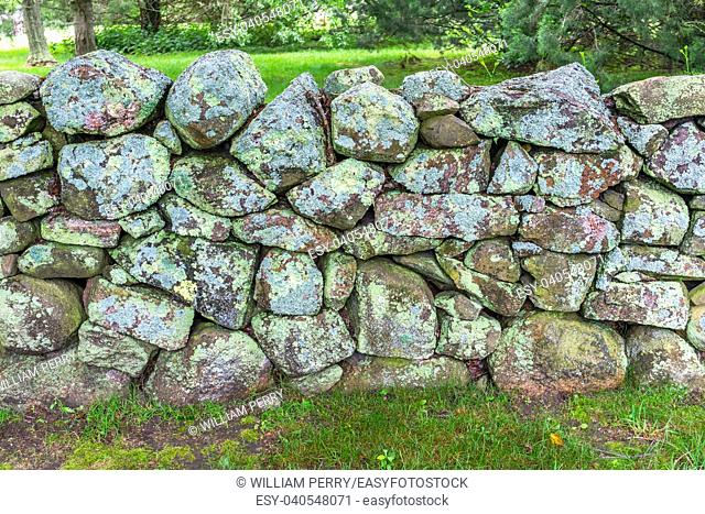 Green Mossy Old Stone Wall New England Padnaram Dartmouth Massachusetts. Stone walls were built in the early 1600s and 1700s in New England torop mark property...