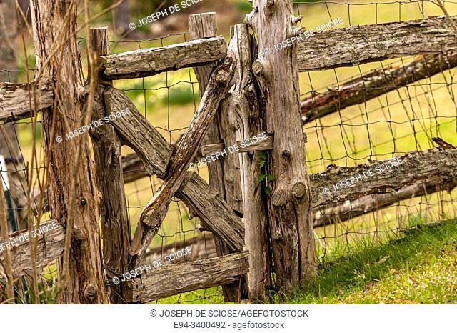 A rough made fence with chicken wire