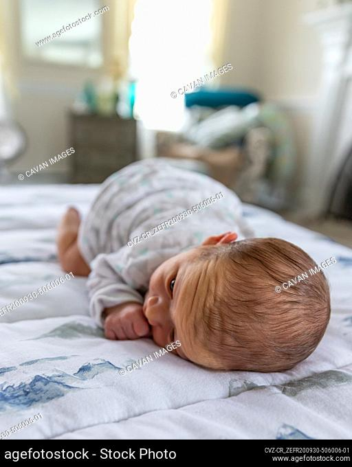 Newborn baby laying on stomach staring at mother
