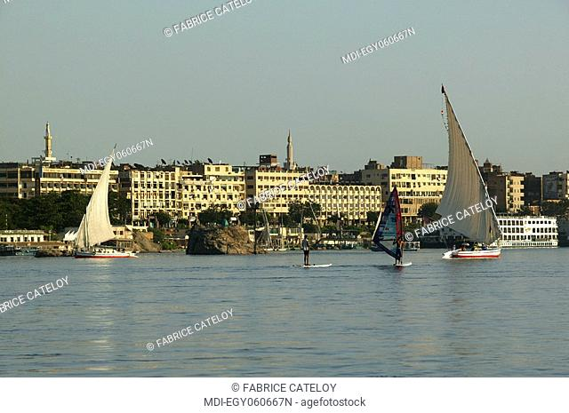 Felouques and windsurf on the Nile