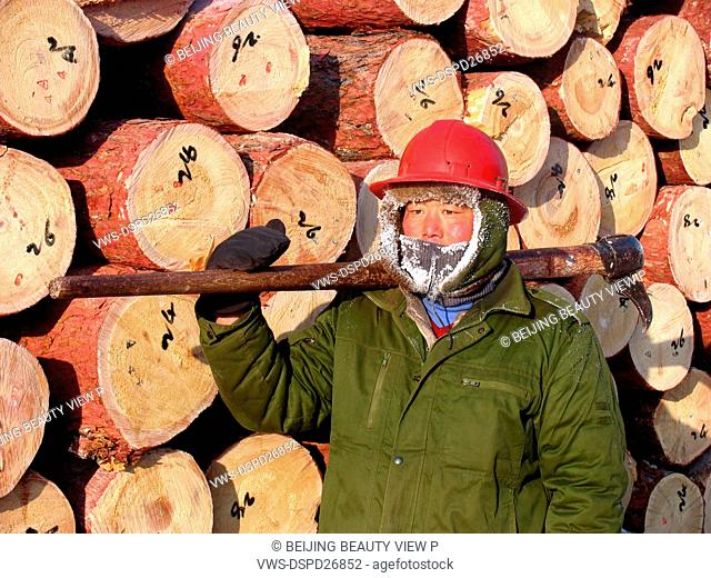 Worker standing in front of Log stacks