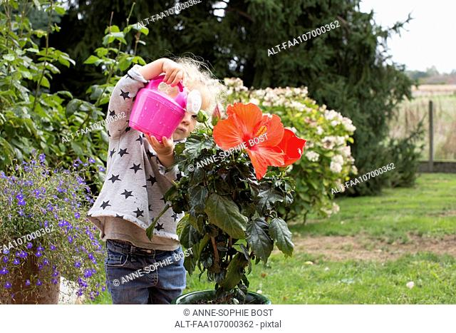Little girl watering potted plants