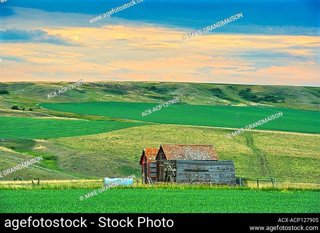 Old farmstead at dusk Jct of Hwy 1 and 32 Saskatchewan Canada