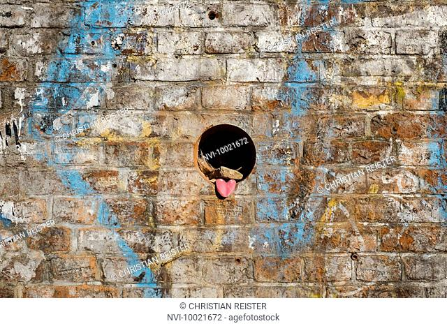 Funny wall with tongue