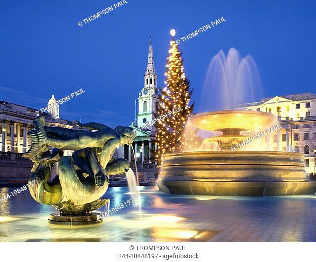 London, Trafalgar Square, fountain, Christmas, tree, England, Europe, travel, UK, United, Kingdom, Great Britain, Euro
