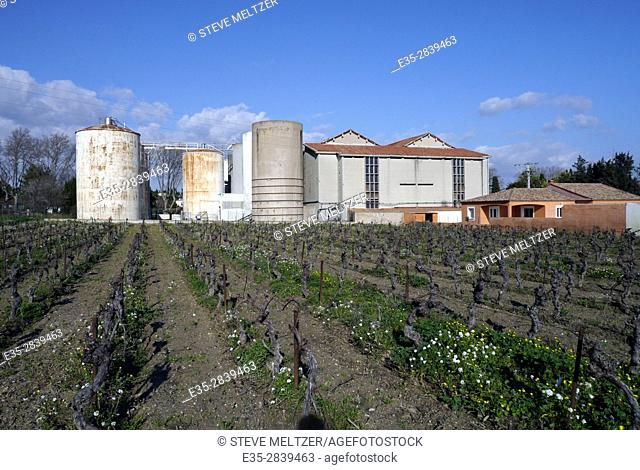 Vineyards surround a rural winery in the Herault of Southern France