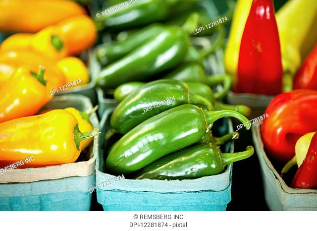 Colorful peppers stacked in containers; Denton, Maryland, United States of America